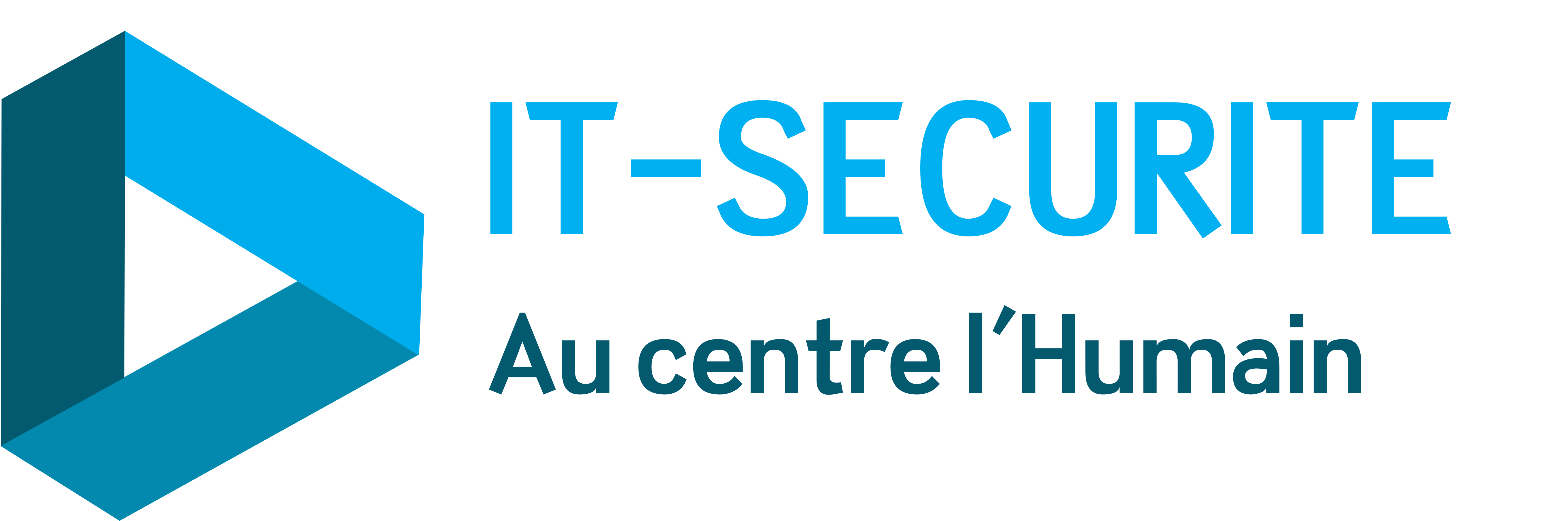 IT-SECURITE